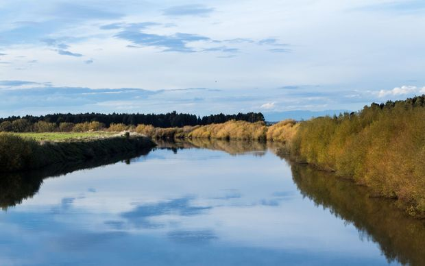 Looking up stream of the wide and still Manawatū river.