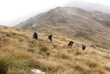 The Tea Bag Team descend the mountain in low cloud and rain.