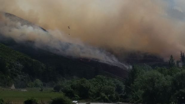 Nine helicopters are fighting the forest fire in the Waikakaho Valley by air.