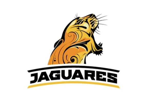 The Jaguars Super Rugby emblem.