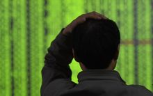 A Chinese investor looks at prices of shares (green for price falling) at a stock brokerage house in Hangzhou city.