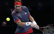 Wildcard David Ferrer will be the top seed in the ASB men's tournament.