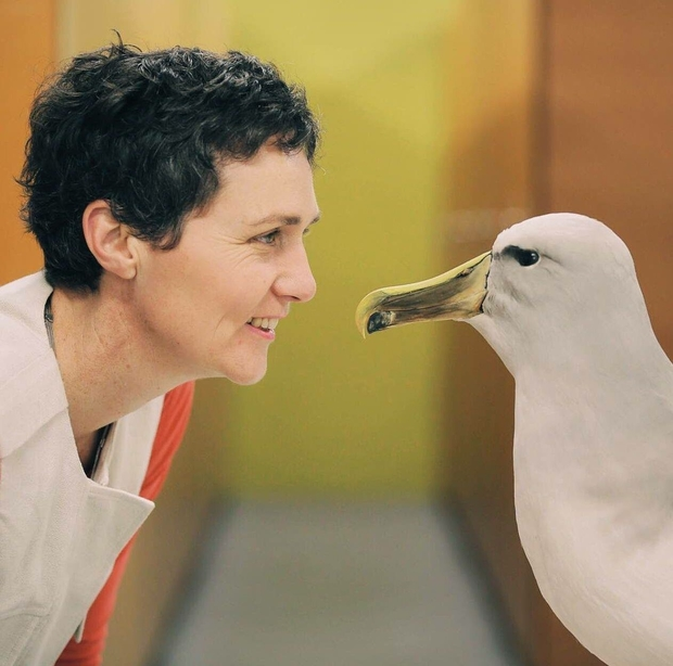 Susan Waugh Face to face with an albatross