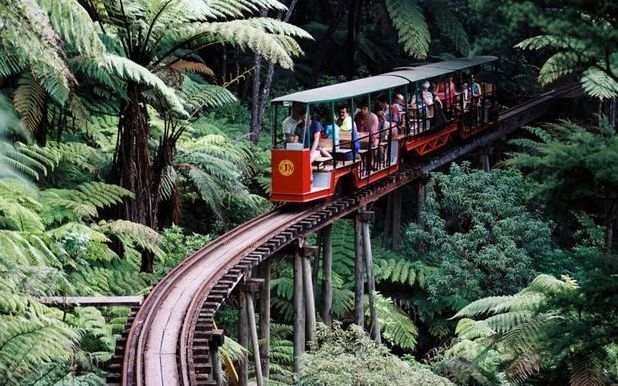The mountain railway in Coromandel. Track laying began in 1975 by Barry Brickell, shortly after he established the pottery workshop on a corner of the 22ha block of land he purchased in 1973.