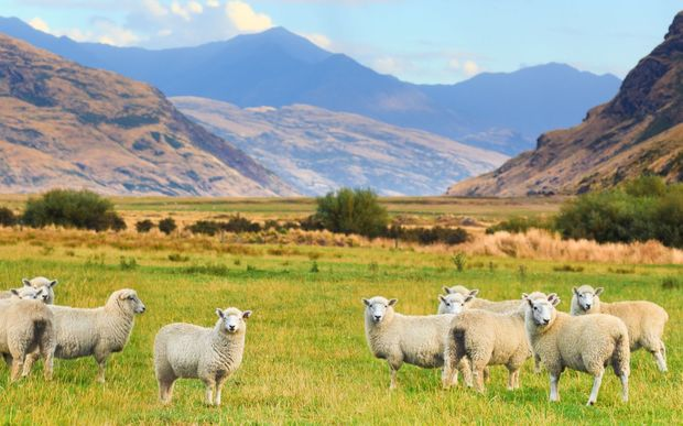 Image Result For Dairy Farm Landscape