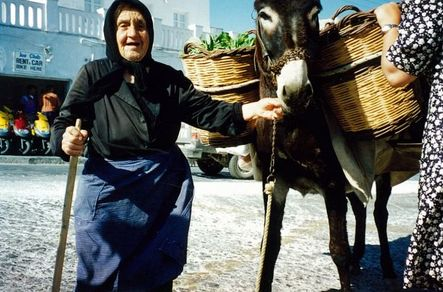 Full woman and donkey in mykynos