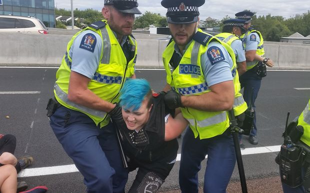 Police remove a TPP protester from an Auckland motorway