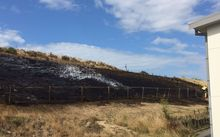 Burnt scrub near Aotea College