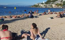 swimmers and sunbather on Oriental Bay beach