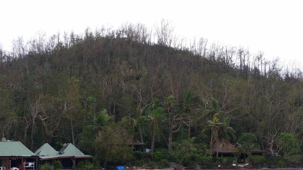 Trees without leaves at Turtle Island Resort in the Yasawas after Cyclone Winston.
