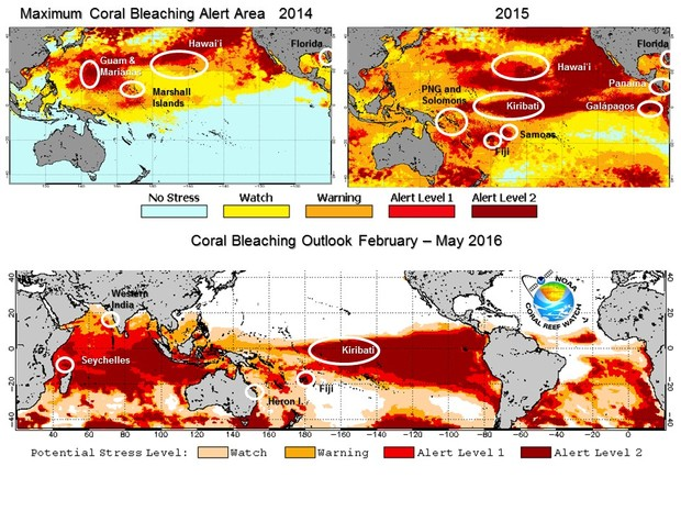 Top image Coral bleaching measured by NOAA satellites in 2014 and 2015 along with locations where the worst coral bleaching was reported. The bottom image shows the Four Month Bleaching Outlook for February-May 2016.