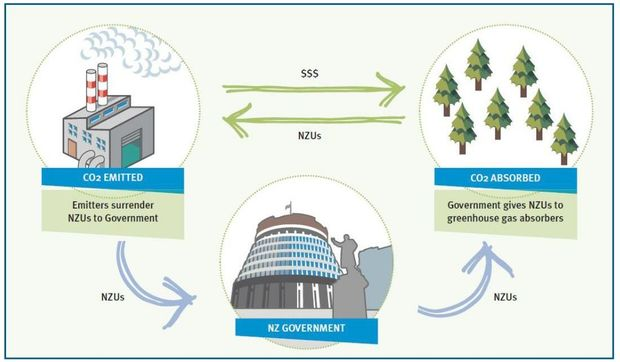 The basic concept of the NZ ETS (http://www.mfe.govt.nz/sites/default/files/media/Climate%20Change/nz-ets-review-discussion-document-november-2015.pdf)