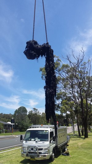 The wet wipes 'fatburg' removed from a sewerage pipe in Eleebana, NSW.