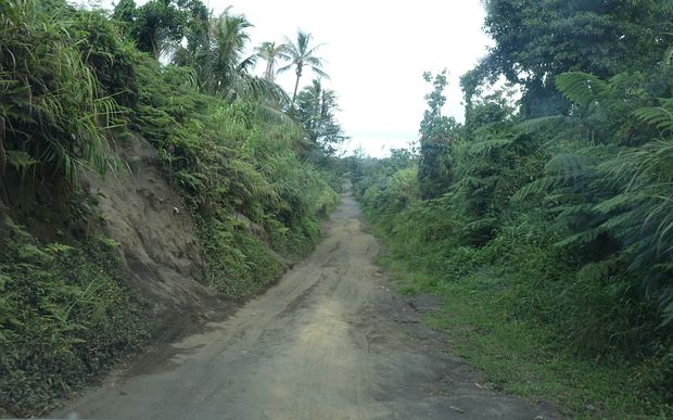 The main road across the interior of the Vanuatu island of Tanna.