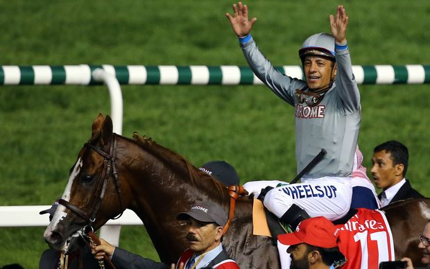 California Chrome and jokey Victor Espinoza after winning the Dubai World Cup.