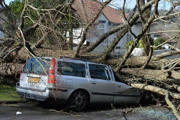 A tree that fell in high winds brought by Storm Katie lies across a car in a street in Brighton.