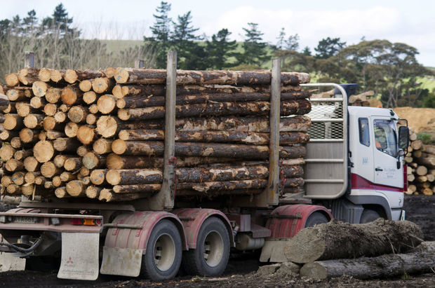 There have been four forestry deaths this year.