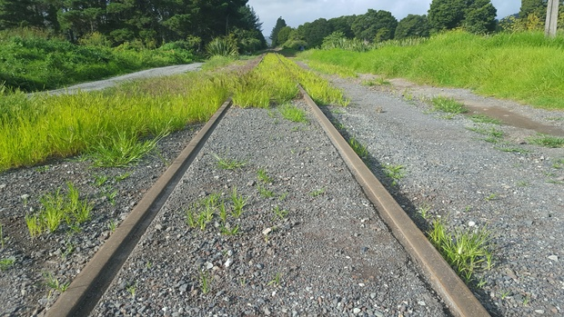 The Northland railway line at Otiria. The line from Otiria to Kauri will be mothballed in August.