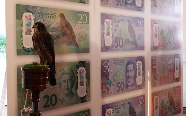 New Zealand's native falcon karearea sits before posters of the new bank notes, including the $20 note on which it features.
