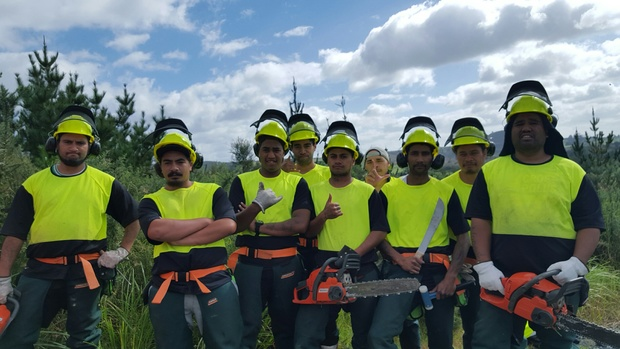 Young Kaikohe men in the Project Manuka scheme.