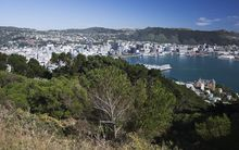Wellington's town belt will grow by 120 hectares.