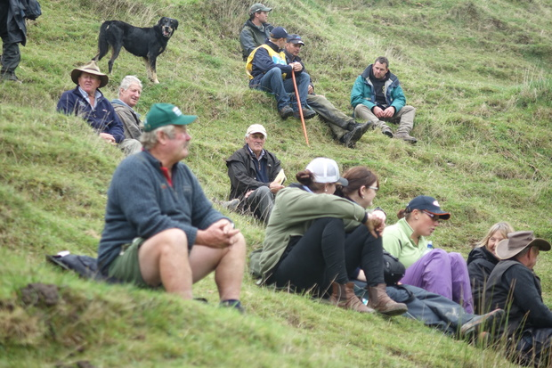 Dog Trials huntaway crowds