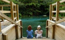 Dutch tourists at Blue Spring, Putaruru