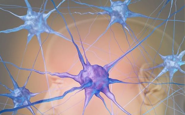 Neuron cells in the brain represent the science of neurology research finding treatment for autism