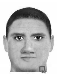 A computer generated picture of the attacker.