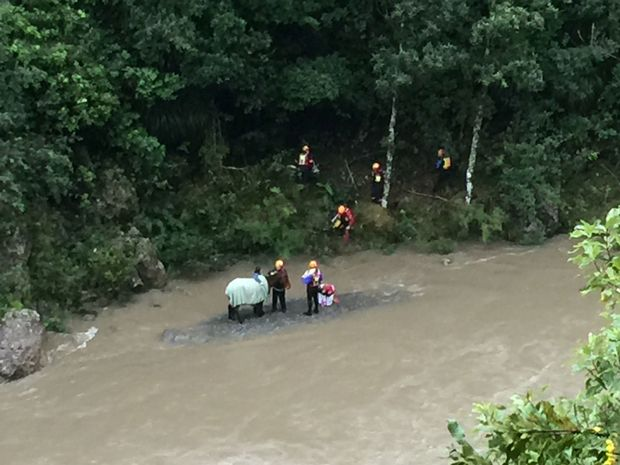 The two year old horse named Poppy was stranded down a steep bank alongside rapidly rising flood water yesterday.
