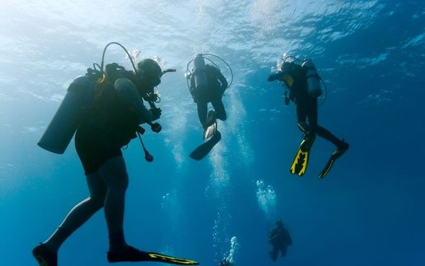 Divers (stock image)