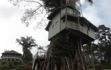 Treehouse at the Lupesina resort.