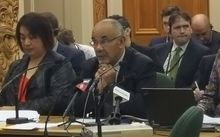 Te Ururoa Flavell speaks to the Māori Affairs select committee hearing this morning.