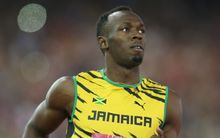 Usain Bolt in action at the Glasgow Commonwealth Games, 2014