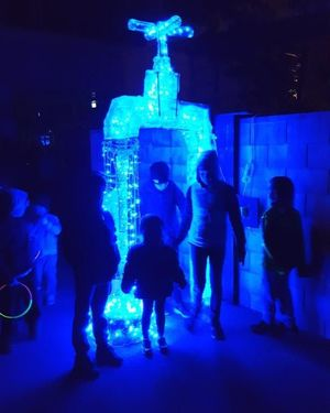 About 55,000 people attended the Light Nelson festival over its four night run and it has secured a place on the mid-winter calendar, organisers say.