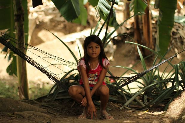 A girl plays in the plantation, surrounded by banana trees. Parents fear their children will suffer health effects from the sprays.