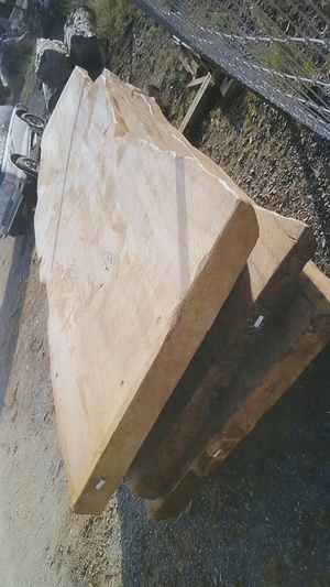 Slabs like this are exported to China as table tops. This photo was filed as evidence in court.