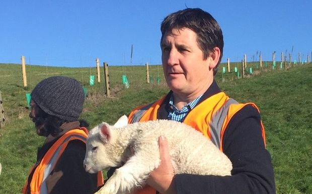 Spring Sheep Milk chief executive Scottie Chapman