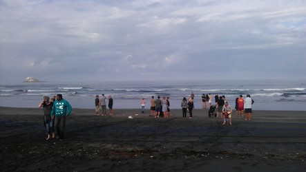 A blessing ceremony was held at Muriwai Beach.