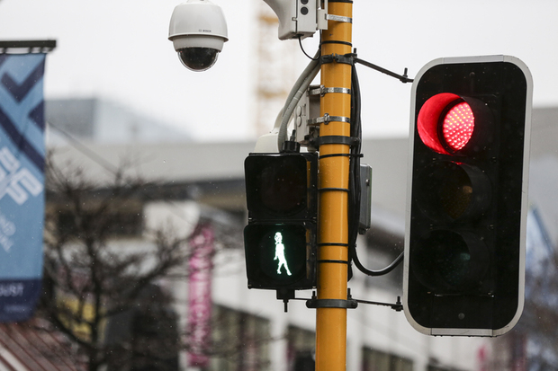 08082016. Photo Rebekah Parsons-King. Carmen Rupe lights light up green on multiple crossings down Cuba Street in Wellington.