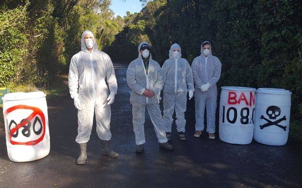 Members of 100% Pure Taranaki picket the toad into the North Egmont Visitors Centre.