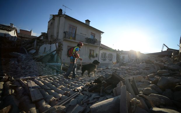 A rescue worker and dog searching for trapped people in  Amatrice.