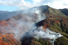 Aerial view of an area devastated by fire near Noumea, in New Caledonia, 28 December 2005.