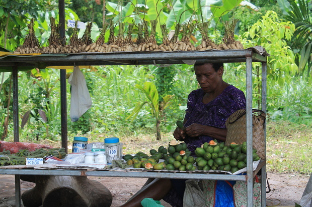 A woman in Papua New Guinea selling betel nut and accessories by the roadside.