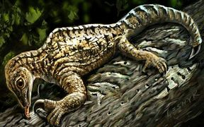 The Drepanosaurus reptile