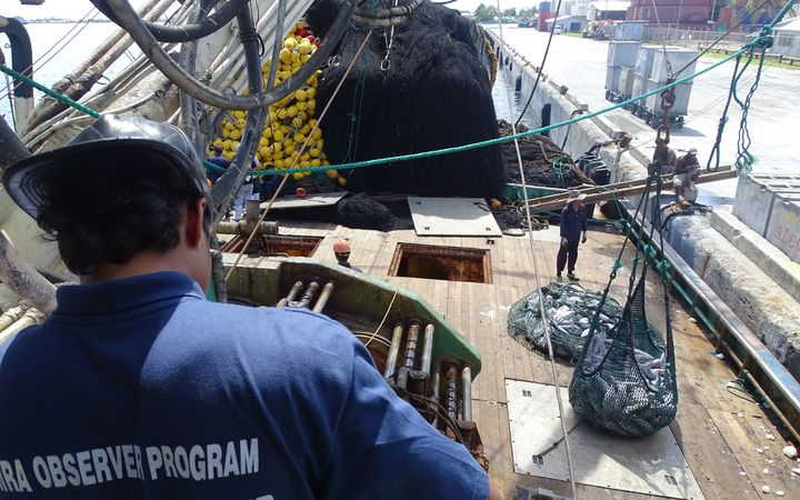 A Marshall Islands Marine Resources Authority fisheries observer monitors tuna being off-loaded from a purse seiner in port Majuro, now said to be the busiest tuna transshipment port in the world