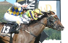 Fanatic and Sophia Rosa contest the New Zealand Oaks at Trentham in March