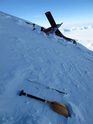 The plane crashed into Mount Elizabeth during a flight from the South Pole to  Terra Nova Bay.