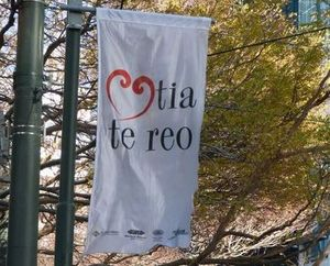 'Love the language' flags are flying in Wellington / Te Whanganui-a-Tara