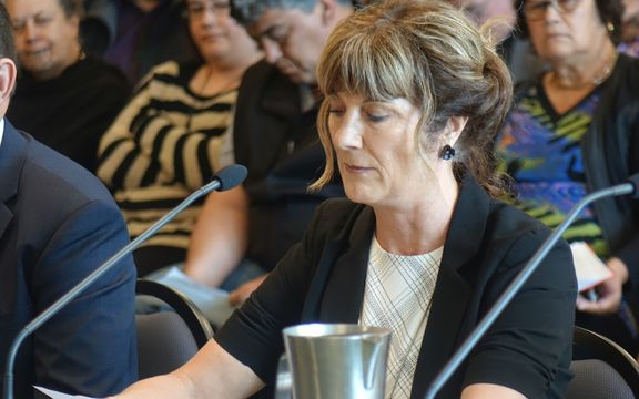 New Plymouth District Council chief executive Barabara McKerrow.